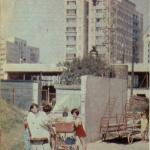 Jelonki w 1979 roku - Tygodnik Stolica 48/1979