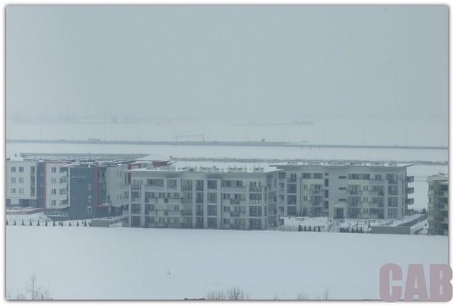 Pola przy Lazurowej - 2013