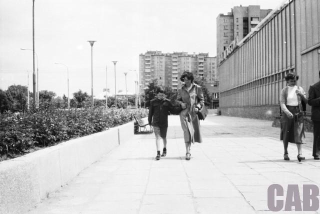 Hala Wola 1982