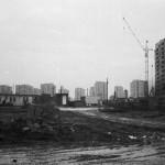Jelonki w budowie