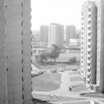 Kolonia Anieli Krzywoń, 1979 r.