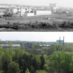 Polanka 1978-2008