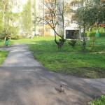 Czumy / Kossutha - podwórko