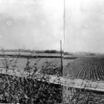 Szeligowska - widok w stronę fortu