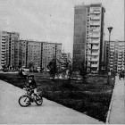 Gołuchowska