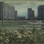 Kaden-Bandrowskiego