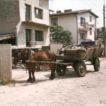 ul. Kontuszowa i wóz Makabry