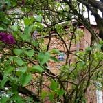 Miasto ogród Jelonki - stara tabliczka